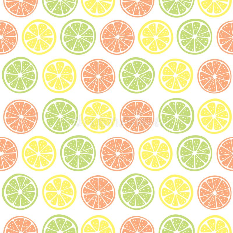 Vector seamless pattern with citrus stock image