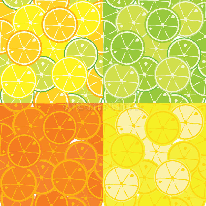 Vector seamless pattern of citrus fruits royalty free illustration
