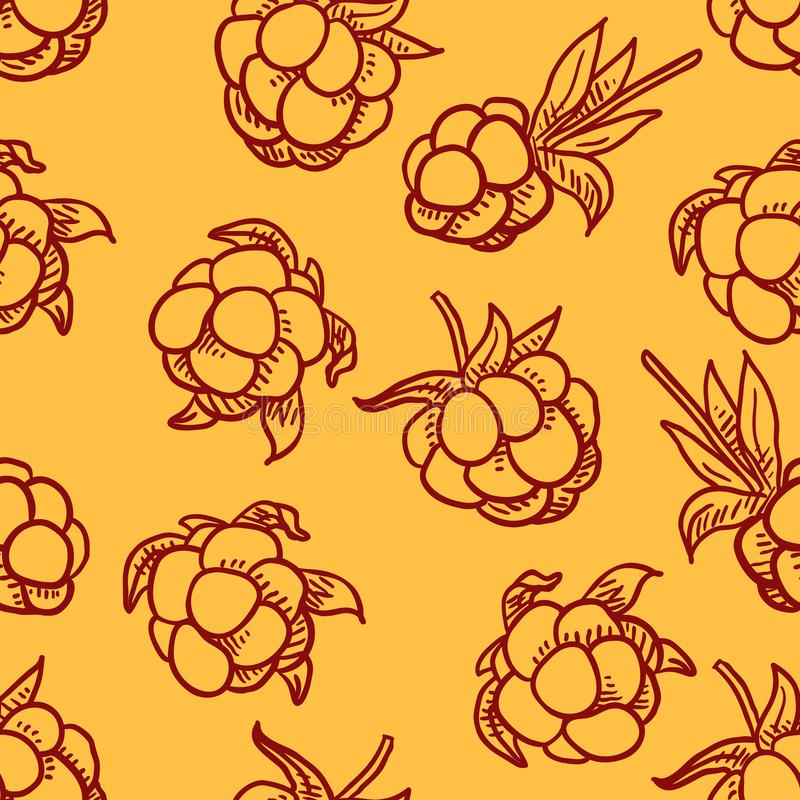 Vector Seamless Pattern of Cloudberries stock illustration