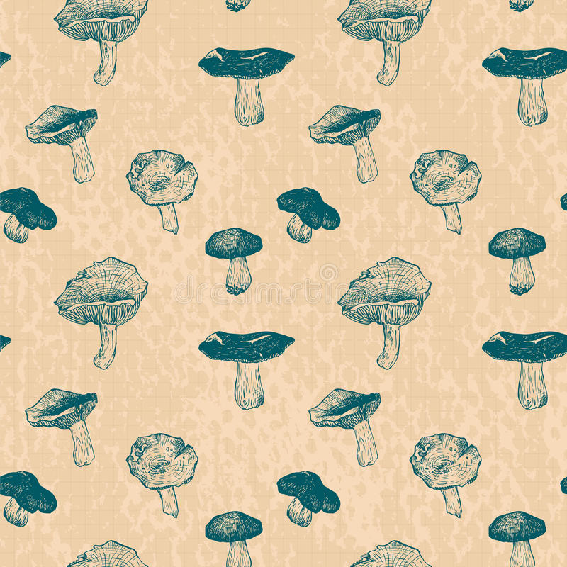 Vector seamless pattern with drawing mushrooms. Vintage vector illustration vector illustration