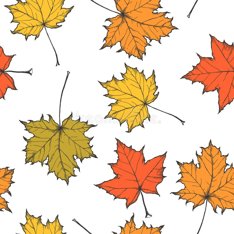 Vector seamless pattern with fallen maple leaves isolated on white. Hand drawn botanical texture with natural elements in autumn. Vector seamless pattern with royalty free illustration