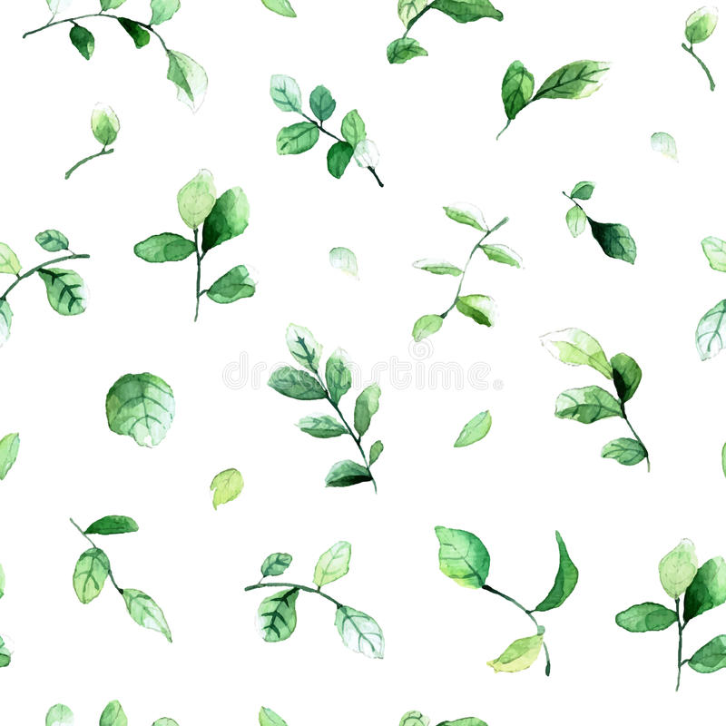 Vector seamless pattern with green leaves painted with watercolors on white background. stock images