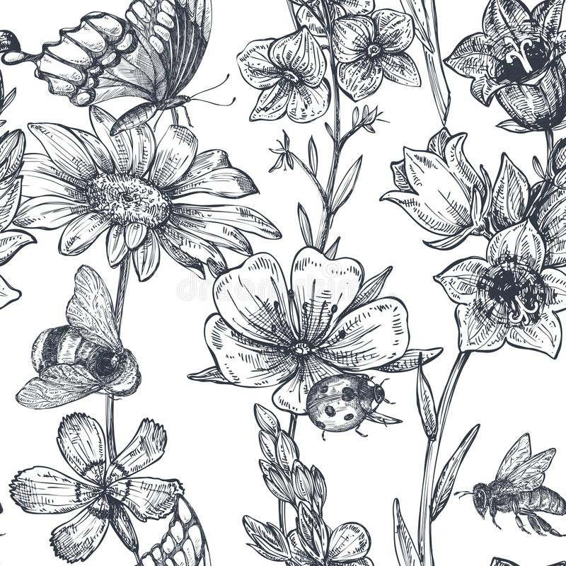 Vector seamless pattern with hand drawn chamomile, wildflowers, herbs, butterflies, bee stock illustration
