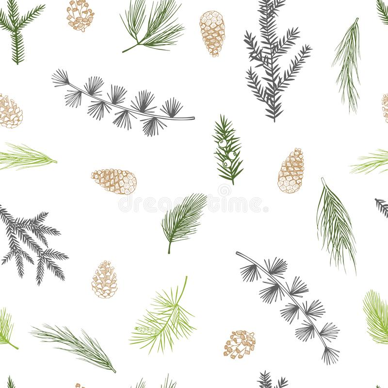 Vector seamless pattern with hand drawn Christmas plants royalty free illustration