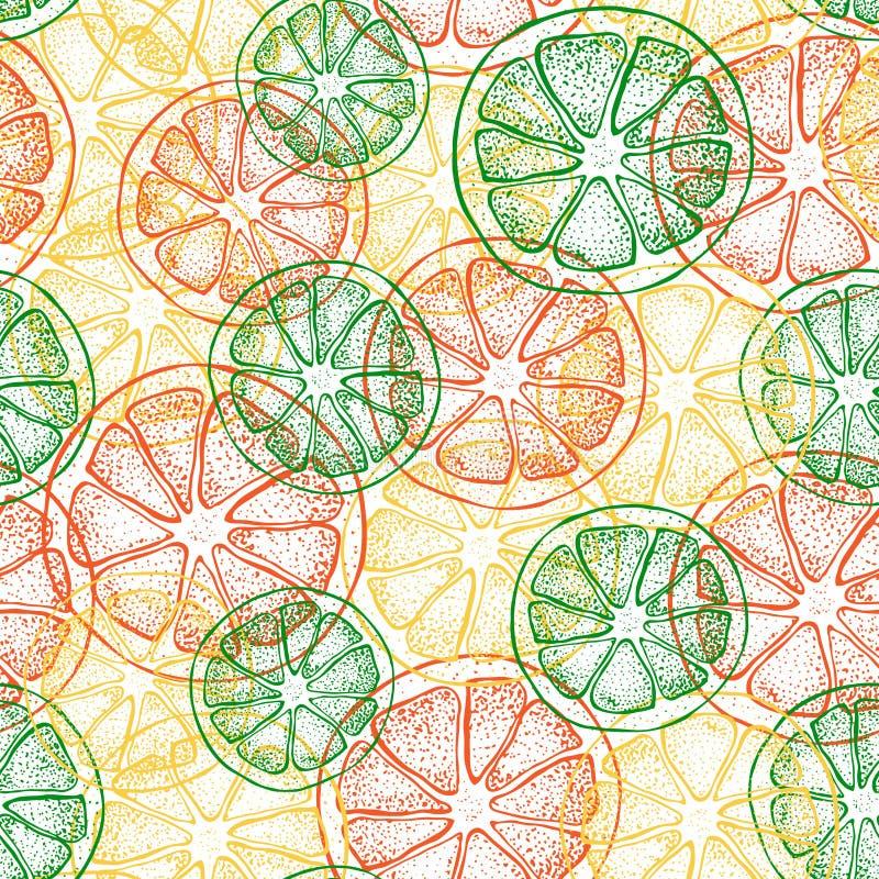 Vector seamless pattern with hand drawn citrus fruit, slices pieces sketch. Mandarin orange, tangerine, lime, lemon. Grapefruit. Detailed vegetarian food stock illustration