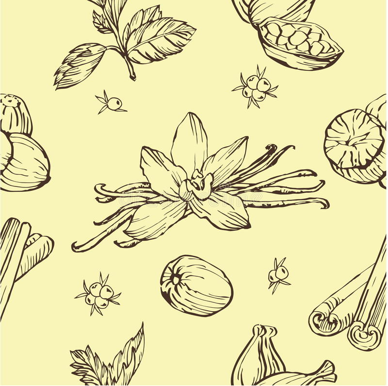 Vector seamless pattern with herbs and spices. Modern stylish texture. Repeating abstract background. vector illustration