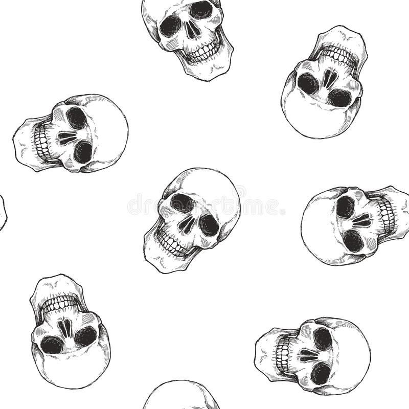 Vector seamless pattern with human skulls isolated on white. Hand drawn texture with symbol of Halloween. Gothic background royalty free illustration