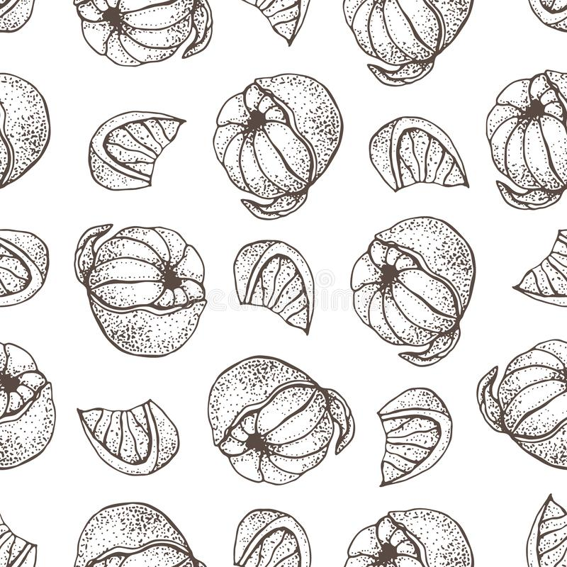 Vector seamless pattern with ink hand drawn citrus fruit, slices and leaves sketch. Mandarin orange, tangerine, lime. Isolated on white background. Detailed stock illustration