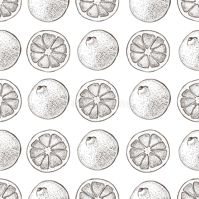 Vector seamless pattern with ink hand drawn citrus fruit, slices and leaves sketch. Mandarin orange, tangerine, lime. Isolated on white background. Detailed vector illustration