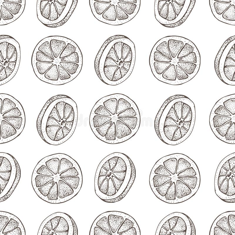Vector seamless pattern with ink hand drawn citrus fruit, slices pieces sketch. Mandarin orange, tangerine, lime. Isolated on white background. Detailed vector illustration
