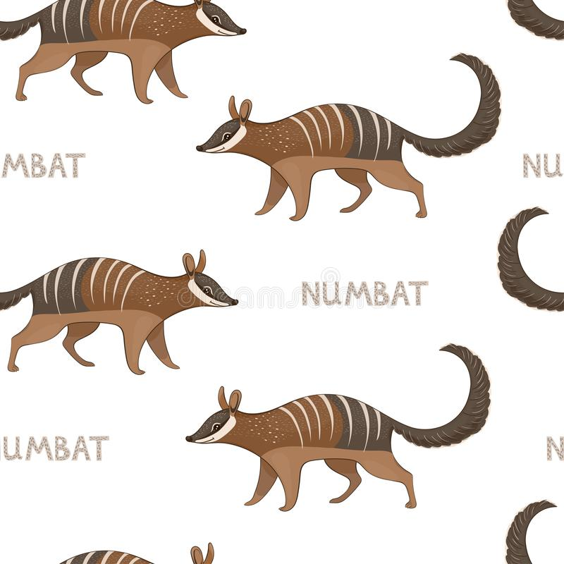 Vector seamless pattern with numbats. Colored seamless background vector illustration