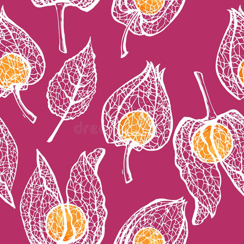 Seamless pattern with branches physalis. White skeleton winter cherry with berry vector seamless background. vector illustration