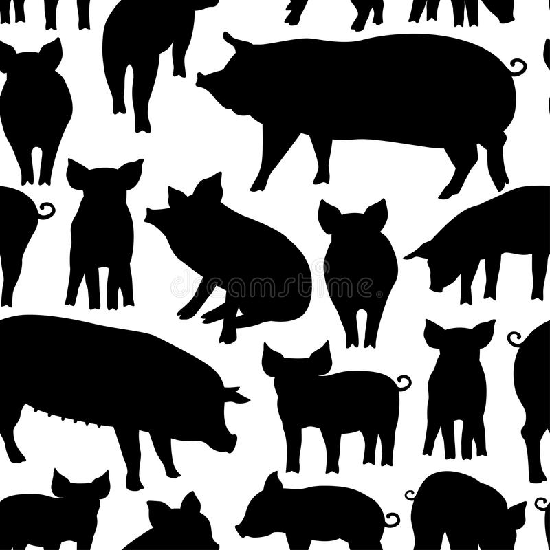 Vector seamless pattern with pig on white background. vector illustration