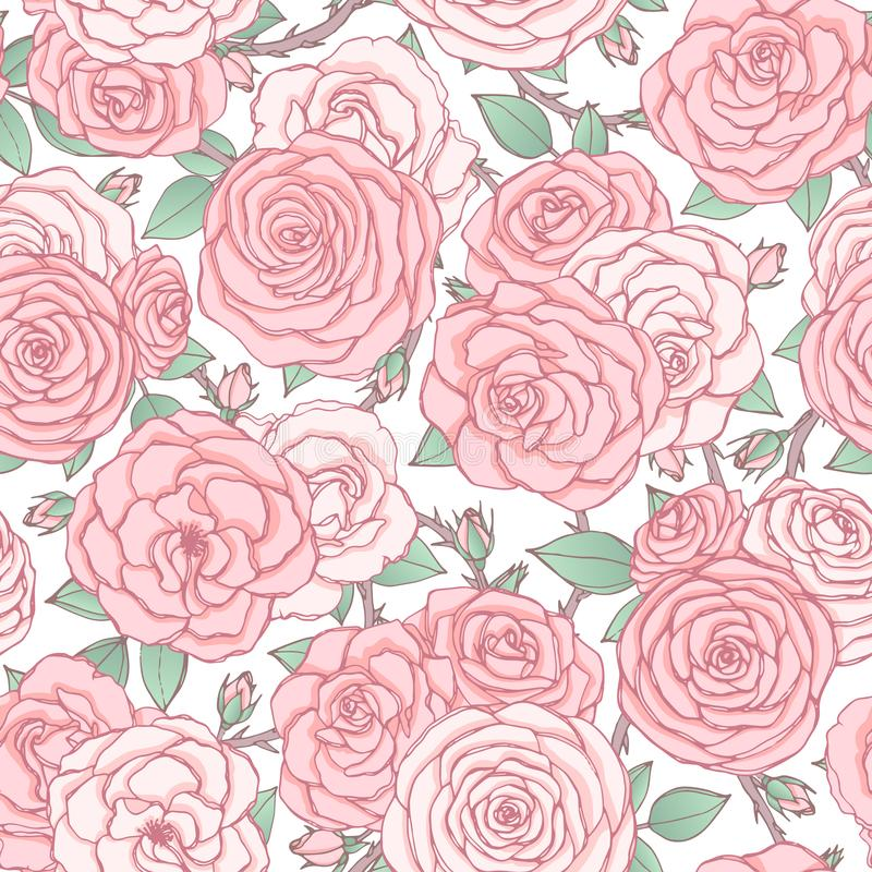 Vector seamless pattern with pink rose flowers and leaves on white background. Vintage floral ornament of blossoms royalty free illustration