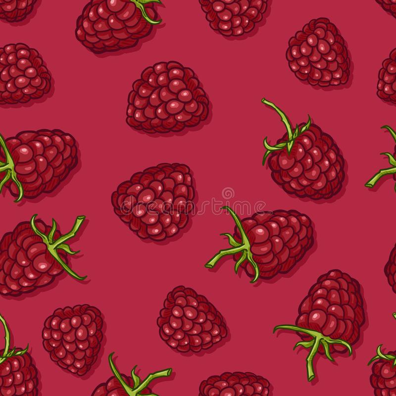 Vector Seamless Pattern of Raspberries vector illustration