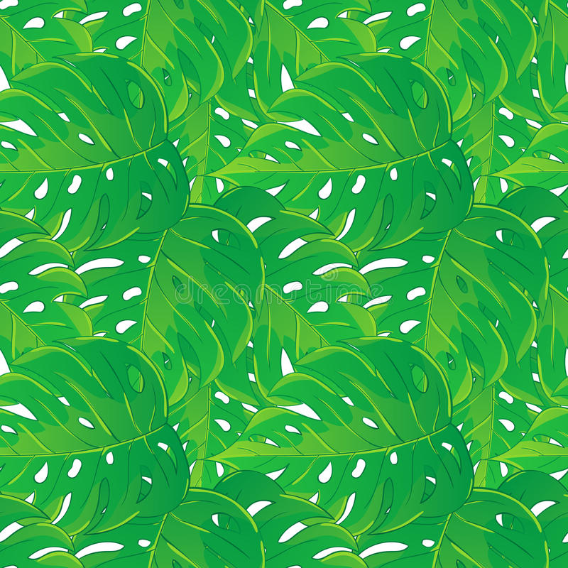 Vector seamless pattern of tropical palm leaves isolated on white background. Vector illustration in hand drawn cartoon style. vector illustration