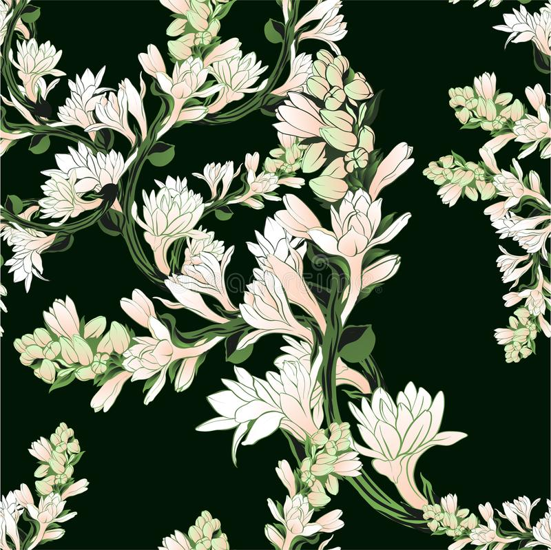Vector seamless pattern. Tuberose - branches. Medicinal, perfumery and cosmetic plants. Wallpaper. Use printed mater. Ials, signs, posters, postcards, packaging royalty free illustration
