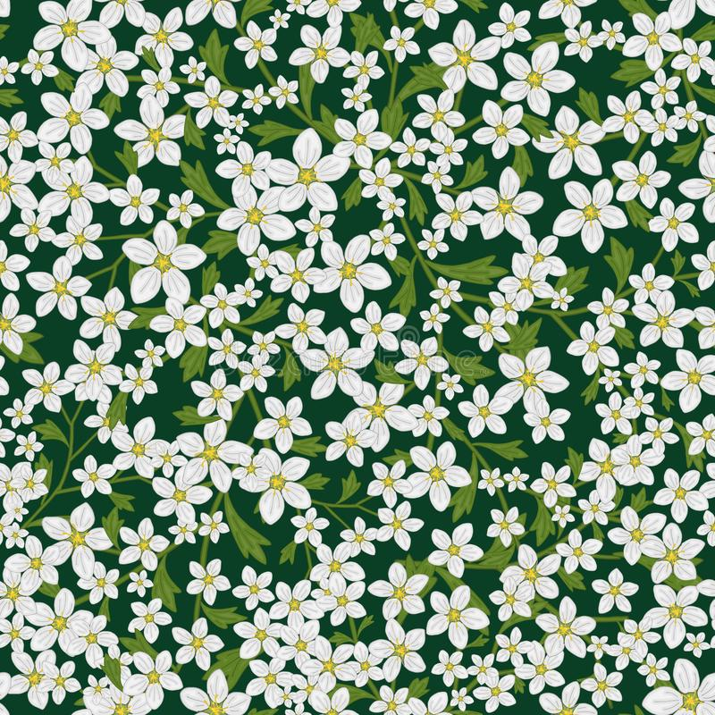 Vector seamless retro pattern, flowers saxifrage. Fills, wallpaper, surface textures. stock illustration