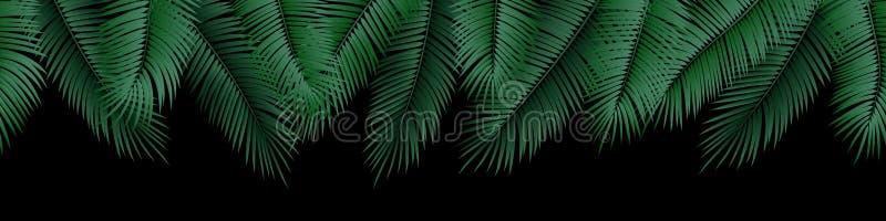 Vector seamless summer palm leaves on black background. vector illustration