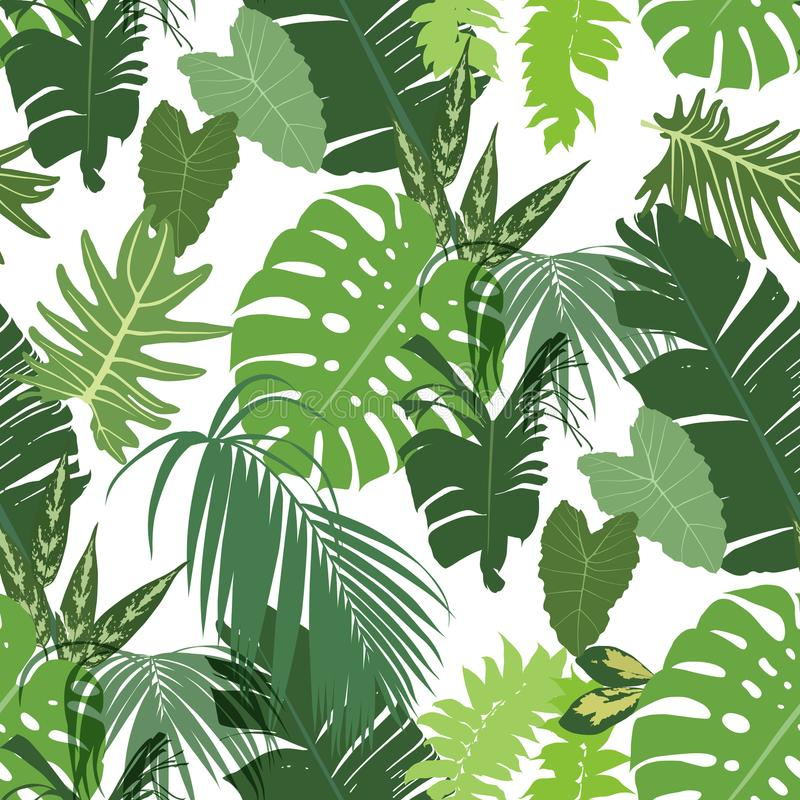 Vector seamless tropical pattern vector illustration
