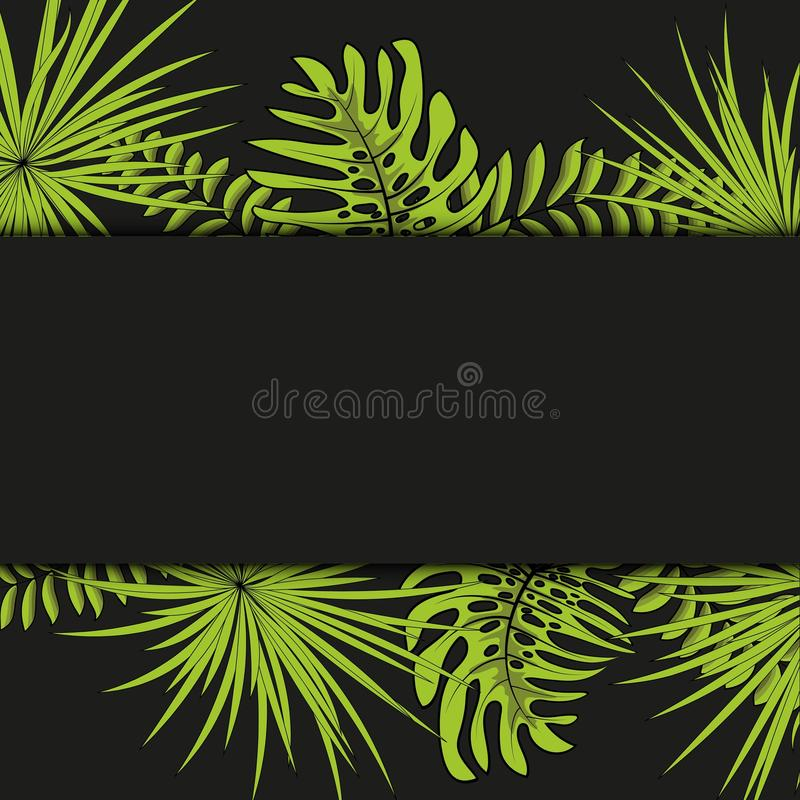 Vector seamless tropical pattern, vivid tropic foliage, with palm leaves. Modern bright summer print design. Black background. vector illustration