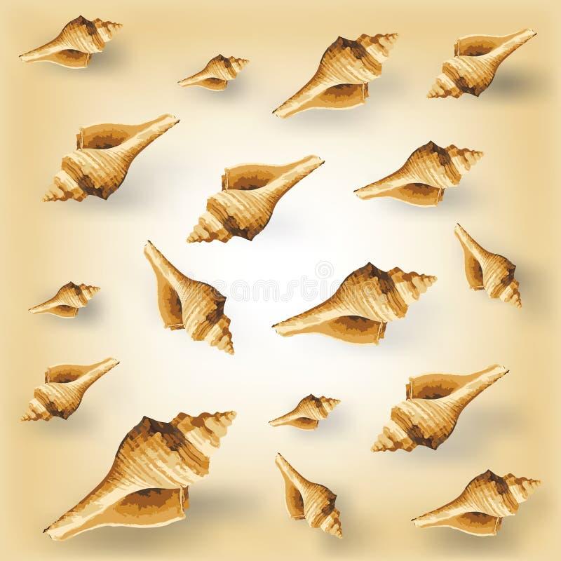 Free Vector Seashell Pattern Stock Image - 72440551