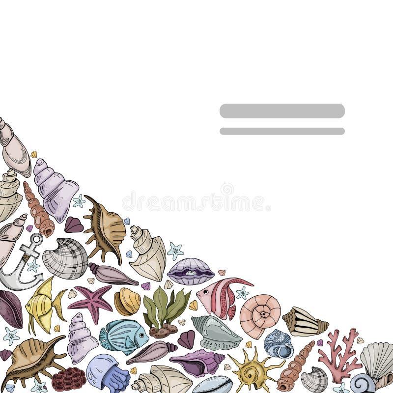 Vector seashells set royalty free illustration