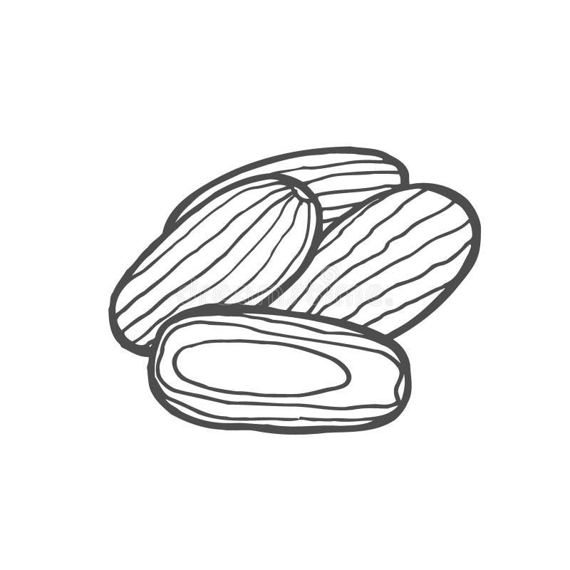Vector secado de las frutas stock de ilustración
