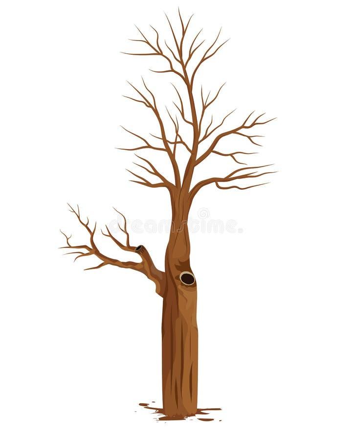 Vector seco del árbol ilustración del vector