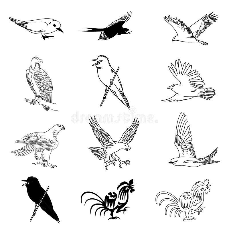 Download Vector Set Of 12 Bird Drawings Stock Vector - Illustration: 13292187