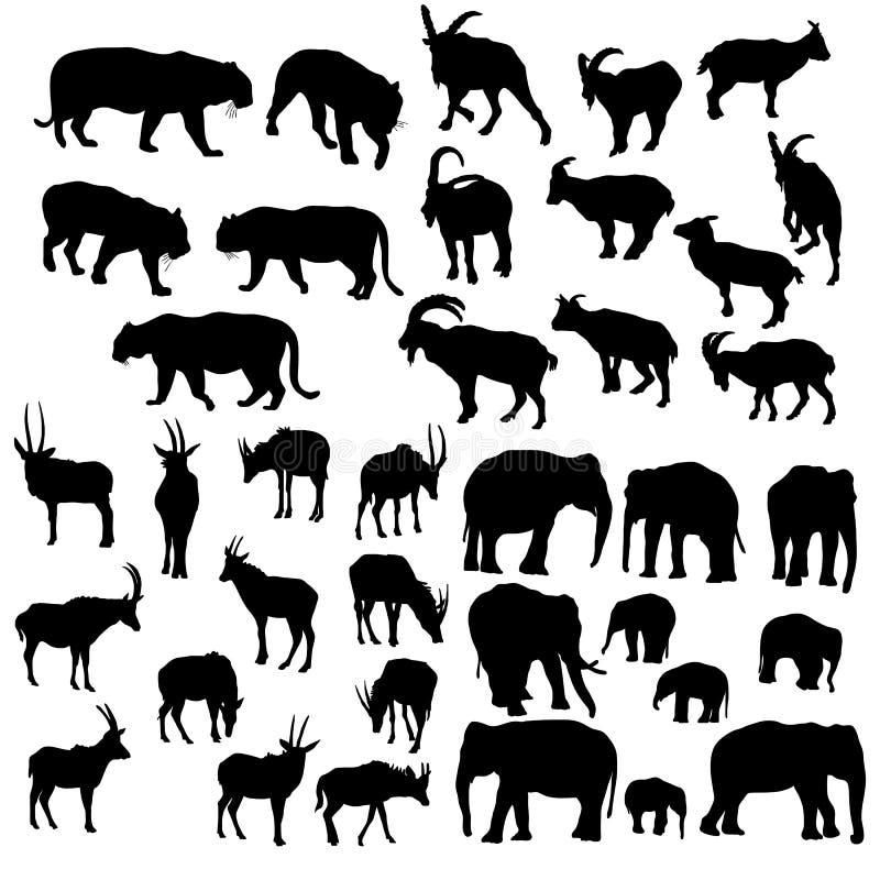 Vector set of animals royalty free illustration