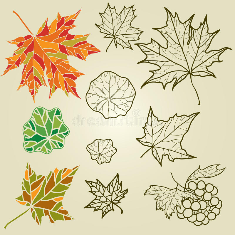 Download Vector set of autumn leafs stock vector. Illustration of maroon - 20457974
