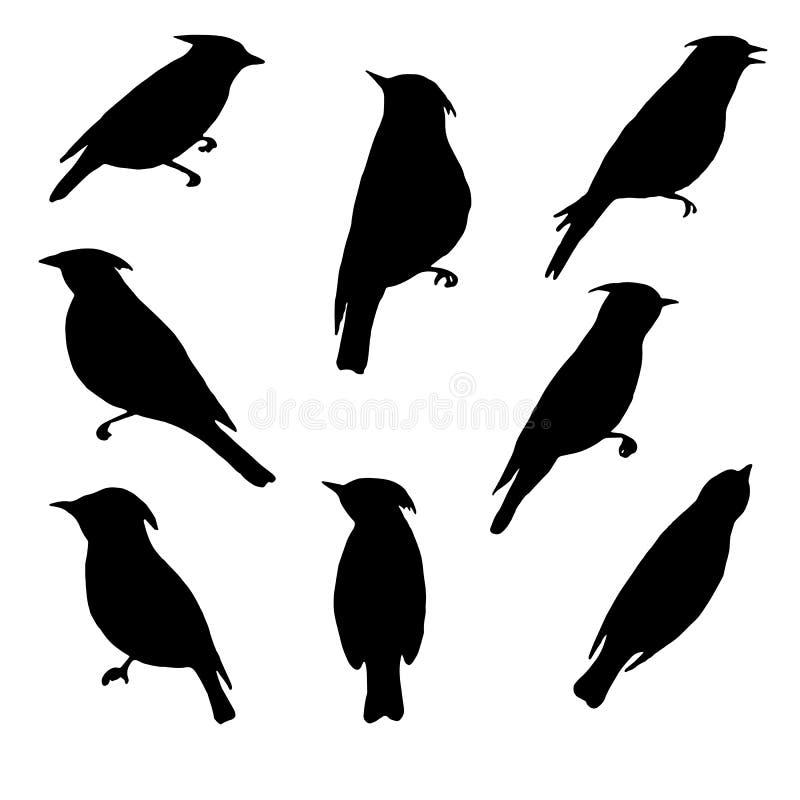 Vector set of birds silhouettes stock illustration