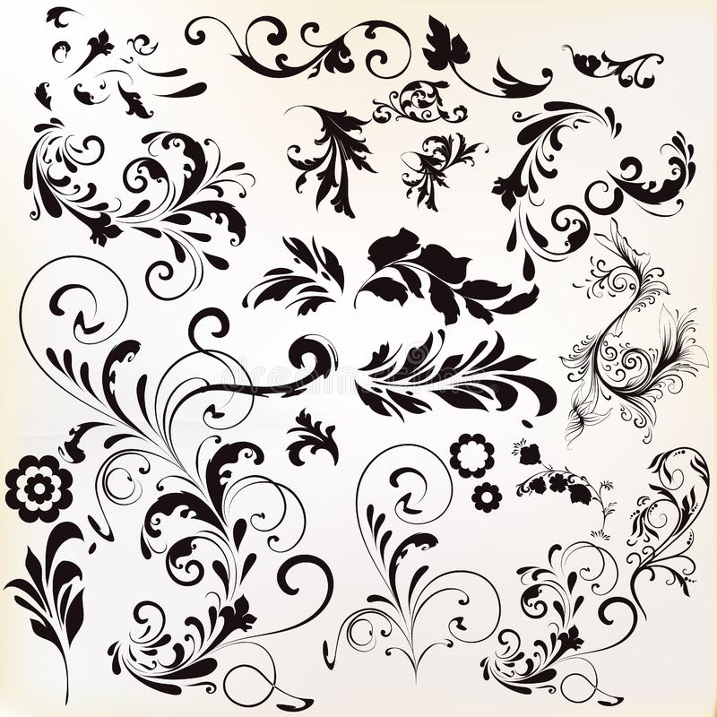 Vector set of calligraphic elements for design. Calligraphic vector stock illustration