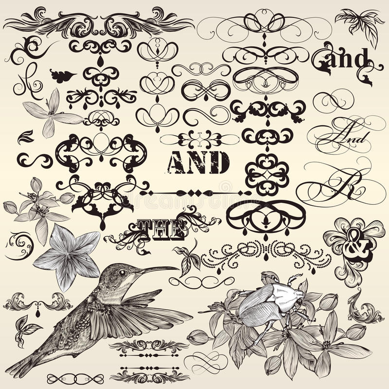 Vector set of calligraphic vintage design elements and page decorations stock illustration