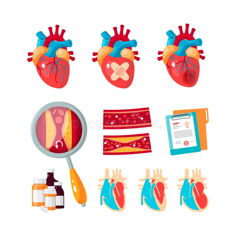 Vector set of cardiology icons in flat style stock illustration