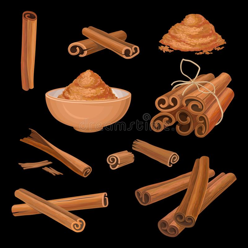 Vector set of cinnamon sticks and powder. Aromatic condiment. Spicy seasoning for dishes, sweets and drinks. Culinary. Set of cinnamon sticks and powder vector illustration