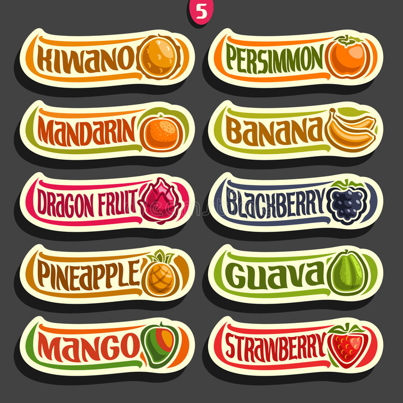Vector Set of colorful Fruits and Berries Labels royalty free illustration