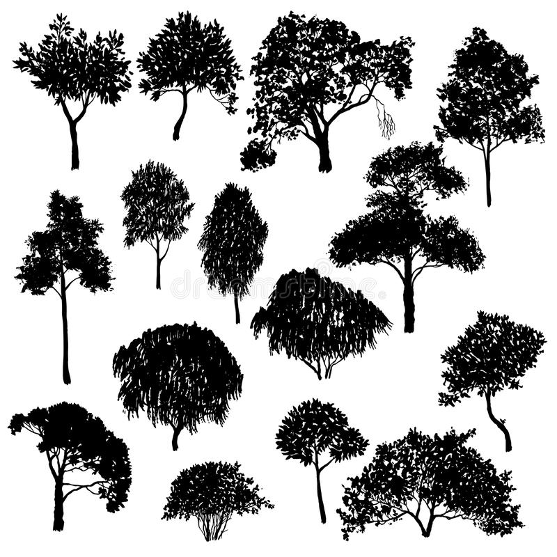 Vector set of deciduous trees. Hand drawn isolated natural elements stock illustration
