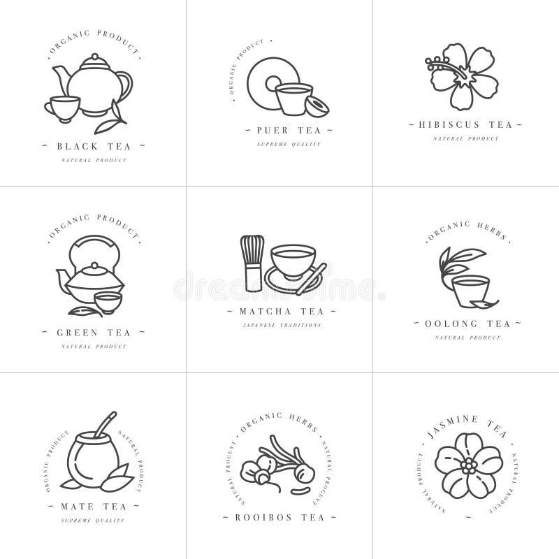 Vector set design monochrome templates logo and emblems - organic herbs and teas Different teas icon 时尚标志 向量例证