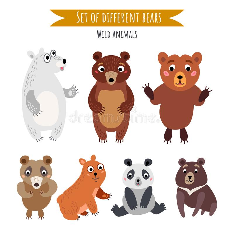 Vector set of different bears isolated on white stock illustration