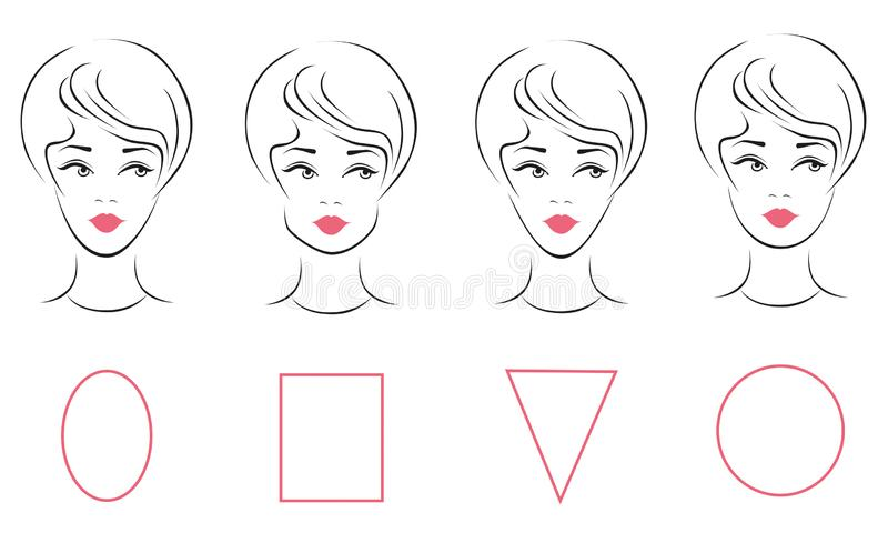 Super Face Shape Female Stock Illustrations 19 908 Face Shape Female Schematic Wiring Diagrams Amerangerunnerswayorg