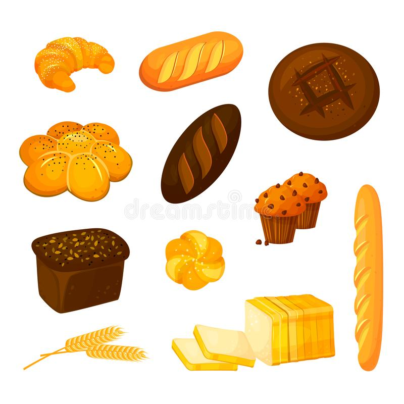 Vector set of different kinds of bread. Cartoon style royalty free stock photo
