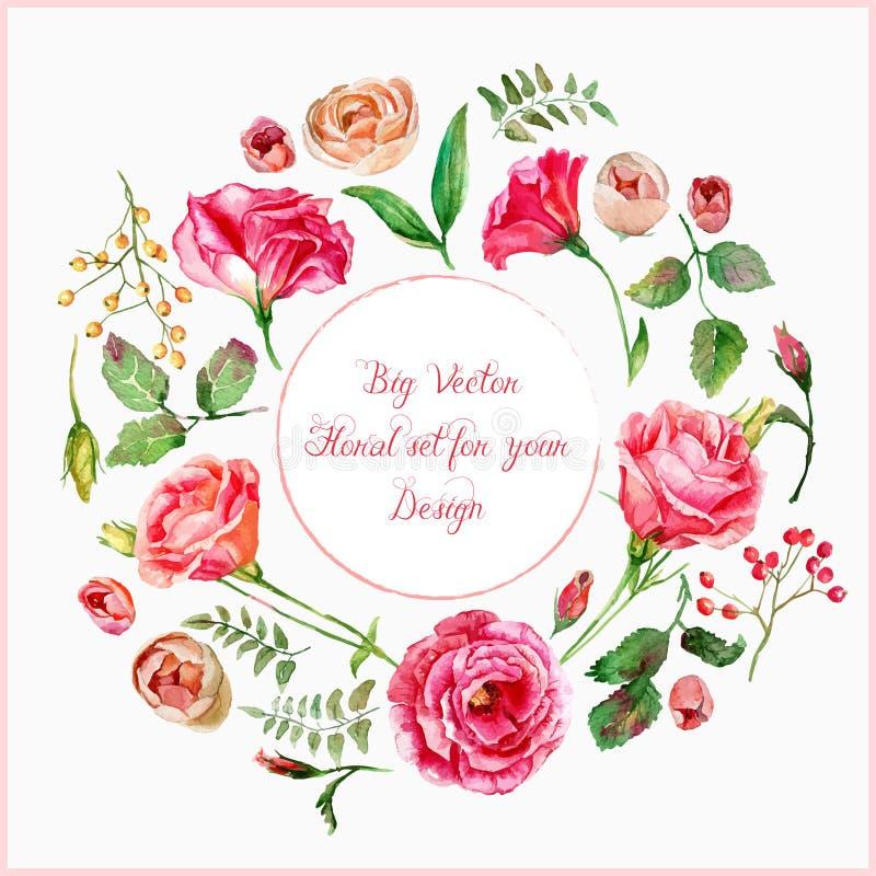 Vector set of different red, pink flowers for design. vector illustration