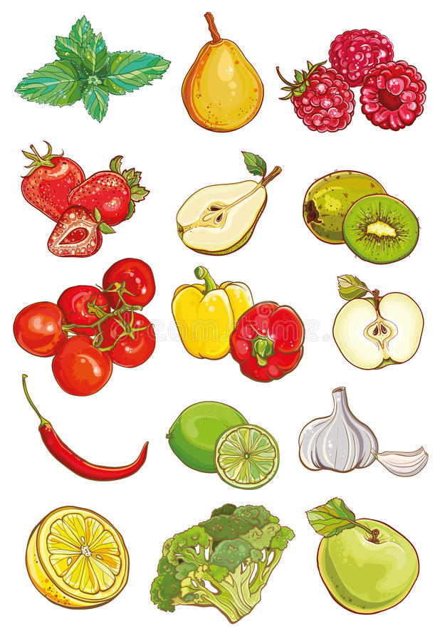 Vector set of fresh vegetables, fruits and berries royalty free illustration