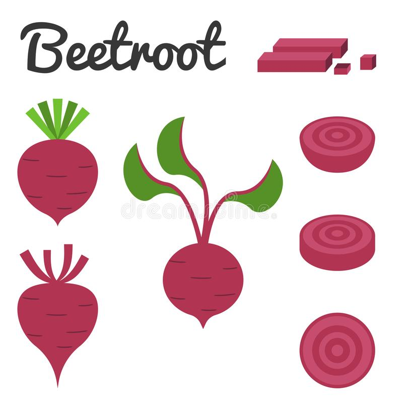 Beetroot icon set. Vector set of fruit and vegetable, Beetroot royalty free illustration