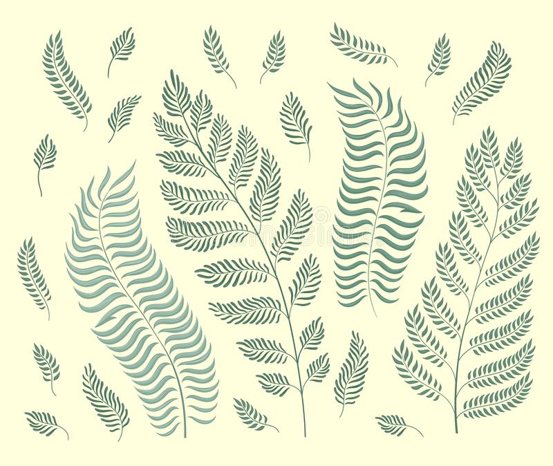 Vector set of garden herbs isolated on retro green background vector illustration