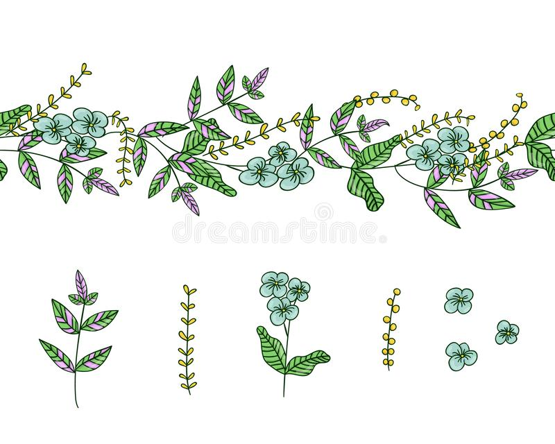 Vector set of garden plant design elements and pattern brush with stylized forget-me-not, basil, oregano. Hand drawn cartoon style. Illustration. Cute summer or royalty free illustration
