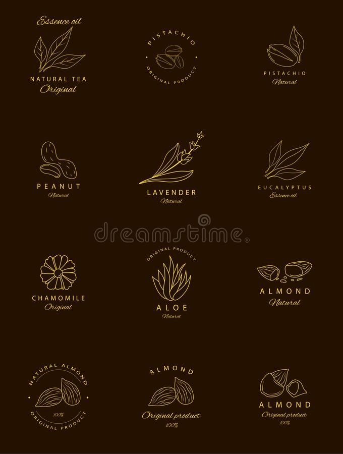 Vector set of golden packaging design templates and emblems. Argan, aloe, peanut, almond, eucalyptus, tea, chamomile and pistachio stock illustration