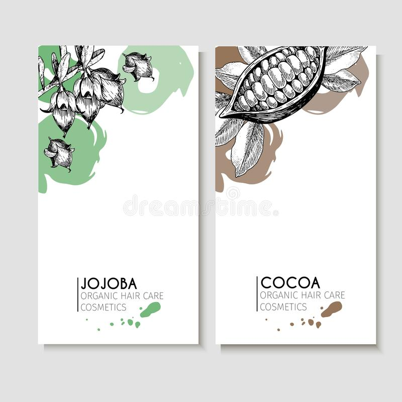 Vector set of hair care ingredients. Organic hand drawn elements. Flyers with jojoba and cocoa. vector illustration